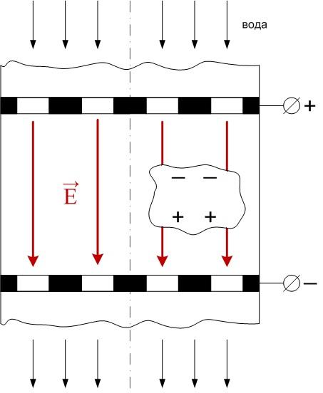 Поляризация зерен в случае одного направления потока воды и вектора изображение